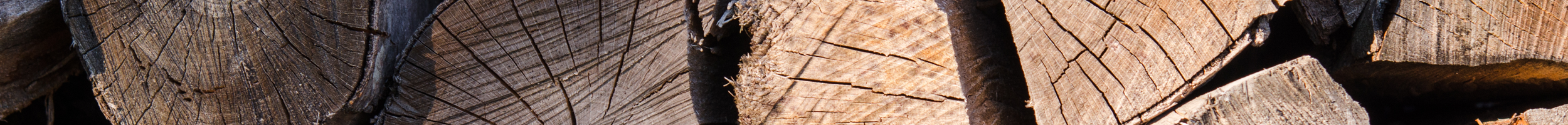 ALL FIRED UP terms and conditions header of logs stacked