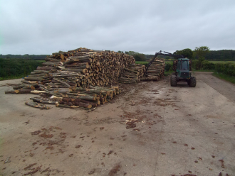 Stacking the cut down trees at ALL FIRED UP